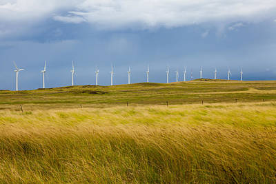 Photograph - Island Turbines And Grass by Ed Cilley