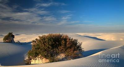 Photograph - Islands In White Sands by Adam Jewell
