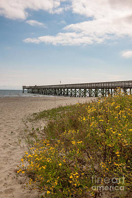 Photograph - Isle Of Palms Pier by Dale Powell