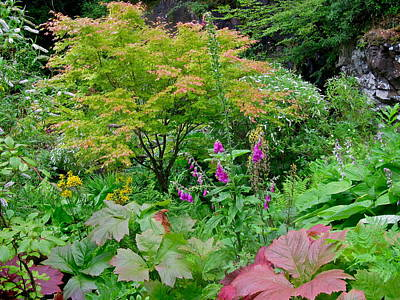 Photograph - Isle Of Skye Garden by Denise Mazzocco