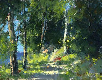 Isle Royale A Trail Near The Lake Art Print by Tom Nelson