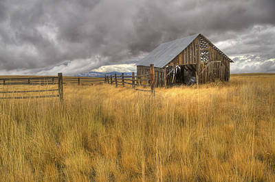 Photograph - Isolated Barn In Oregon by Jean Noren