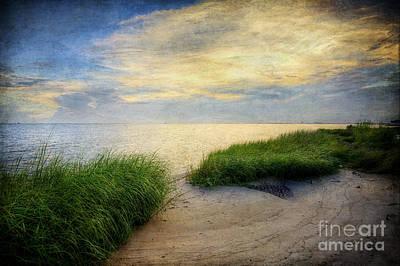 Isolated Beach Sunset Original by Joan McCool