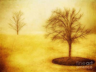 Isolated Art Print by Dan Carmichael