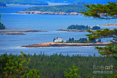 Photograph - Isolated In Maine by Mary Carol Story