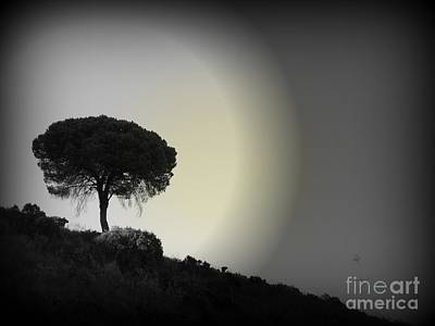 Art Print featuring the photograph Isolation Tree by Clare Bevan