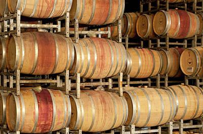 Winery Photograph - Israel, Wooden Barrels At Golan Heights by Ellen Clark
