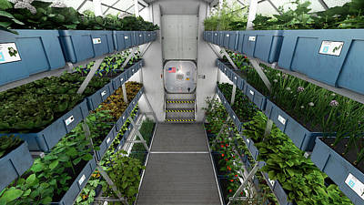 Plant Physiology Photograph - Iss Plant Growth System by Nasa