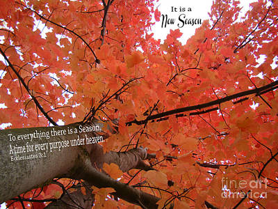 It Is A New Season Art Print by Beverly Guilliams