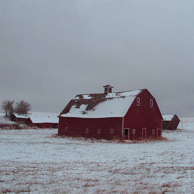 Barns In Snow Photograph - It Stood Forever by Abigail Ellison