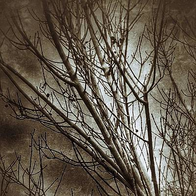 Photograph - It Was A Dark And Stormy Day by Kathleen Messmer