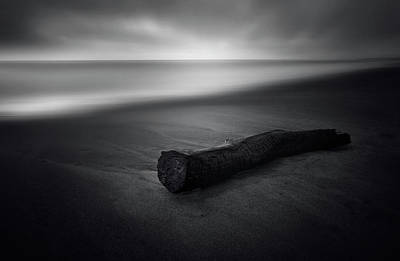 Log Wall Art - Photograph - It Was Calm by Carlo Tonti