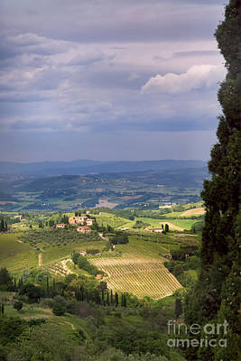 Photograph - Italian Countryside by Michele Steffey