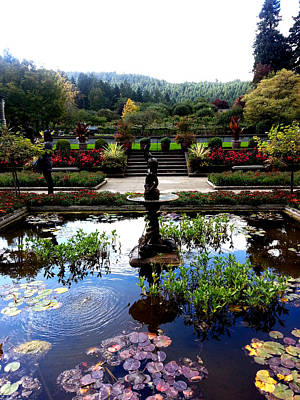 Photograph - Italian Garden by Nikki Dalton