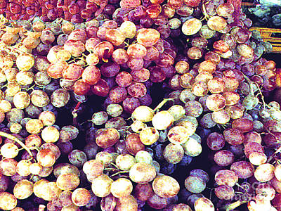 Photograph - Italian Grapes  by Merton Allen