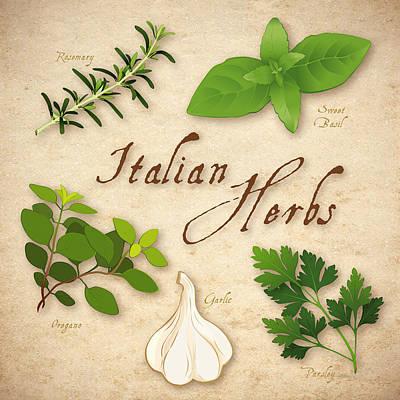 Italian Herbs Art Print