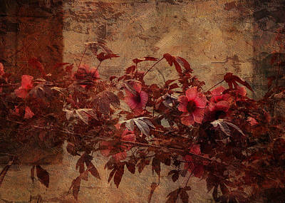 Photograph - Italian Impasto Style Coral Floral Branch by Carla Parris
