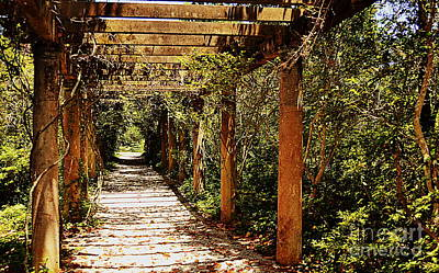 Wilmington Photograph - Italian Pergola Hallway by Amy Lucid