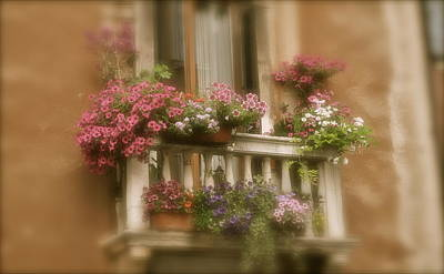 Italian Windowbox 1 Art Print