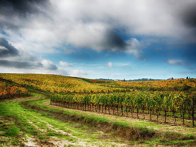 Farm Scene Photograph - Italy, Montepulciano, Autumn Vineyard by Terry Eggers