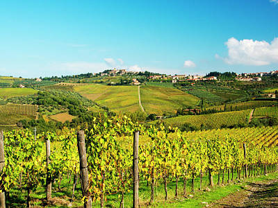 Autumn Farm Scenes Photograph - Italy, Tuscany, Chianti, Panzano by Terry Eggers