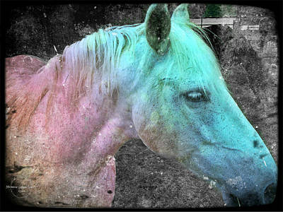 Photograph - It's 1970 And I Want A Groovy Rainbow Pony by Absinthe Art By Michelle LeAnn Scott