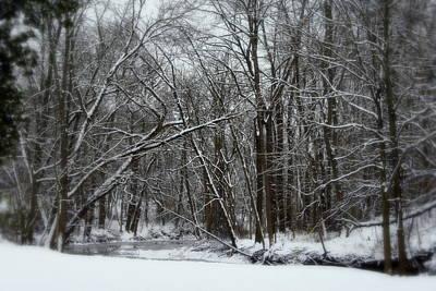 Its A Beautiful Winter Art Print by Kay Novy