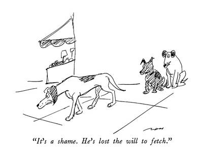 Dog Walking Drawing - It's A Shame.  He's Lost The Will To Fetch by Al Ross