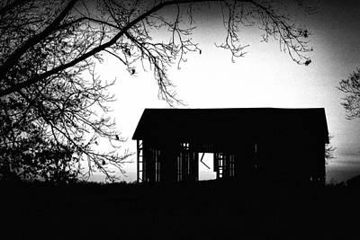Photograph - It's A Sin To Kill A Mockingbird by Sennie Pierson