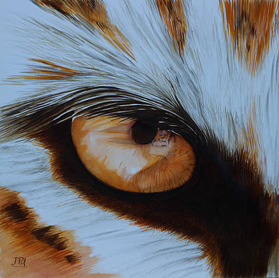 Endangered Painting - It's All In The Close Up by Jill Parry