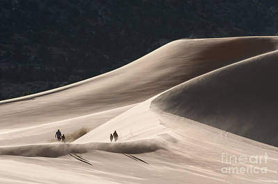 Photograph - It's All Uphill by Sandra Bronstein