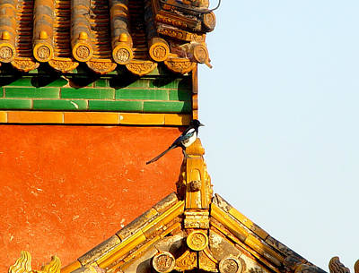 Beijing Photograph - It's Chinatown . . . by David Mortenson