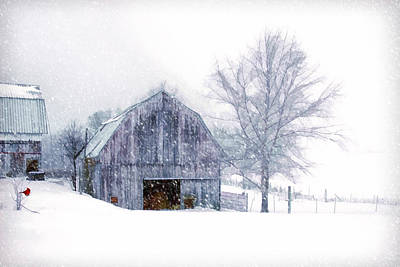 It's Cold Outside Art Print by Mary Timman