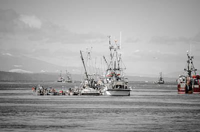 Photograph - It's Go Time Herring Season by Roxy Hurtubise