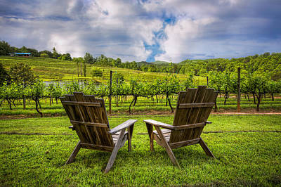 Grapevine Photograph - It's Happy Hour by Debra and Dave Vanderlaan
