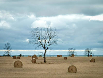 Photograph - It's Hay Day by EG Kight