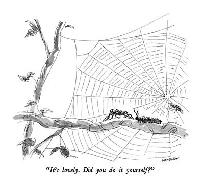 Spider Drawing - It's Lovely.  Did You Do It Yourself? by James Stevenson