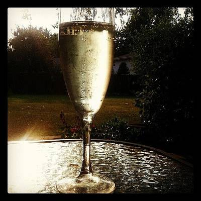 Photograph - It's Sunday, Must Mean Prosecco! by Lauri Novak
