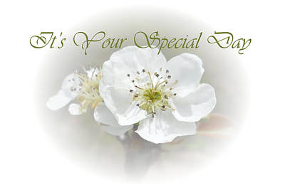 Photograph - It's Your Special Day by Judy Hall-Folde