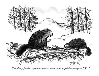 Beaver Drawing - I've Always Felt That My Role As A Beaver by Donald Reilly