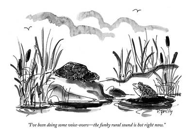 Turtle Drawing - I've Been Doing Some Voice-overs - The Funky by Donald Reilly