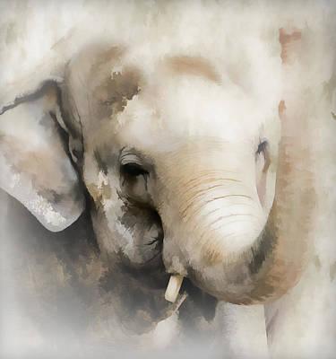 Photograph - Ivory Elephant by Athena Mckinzie