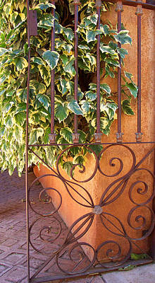 Photograph - Ivy And Old Iron Gate by Ben and Raisa Gertsberg