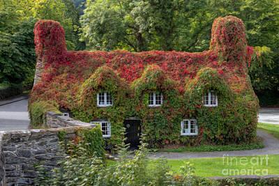 Llanrwst Digital Art - Ivy Cottage by Adrian Evans