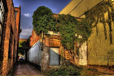 Photograph - Ivy Covered Building by Jonny D