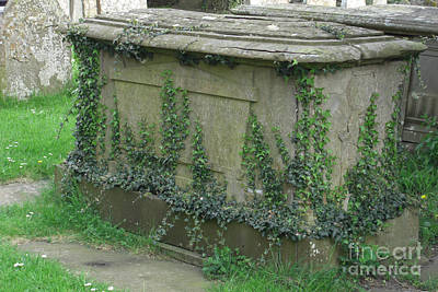 Photograph - Ivy-covered Chest Tomb by Deborah Smolinske