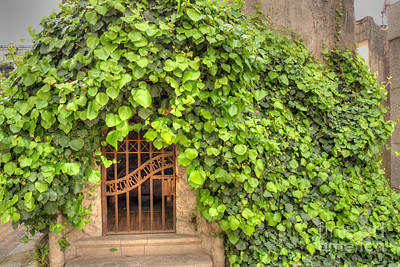 Photograph - Ivy-covered Mausoleum by Deborah Smolinske