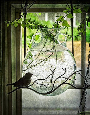 Photograph - Ivy In The Window by Wayne Meyer