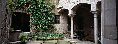 Girona Photograph - Ivy On The Wall Of A House, Girona by Panoramic Images