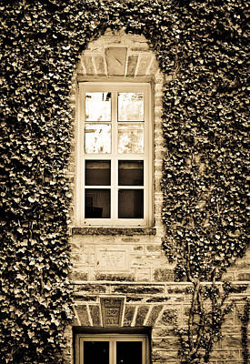 Photograph - Ivy Windows In Sepia - Princeton University by Colleen Kammerer